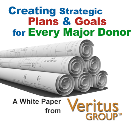Creating Strategic Plans & Goals for Every Major Donor.