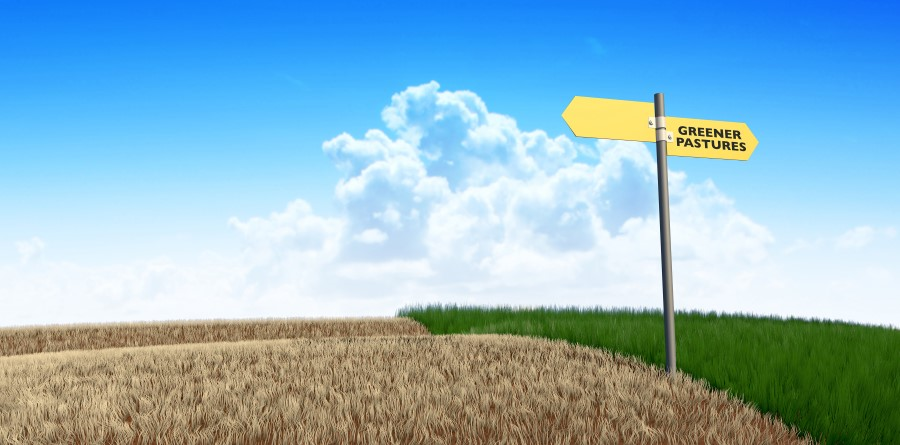 Picture of a barren field next to green pastures with a sign indicating direction of both - major gift