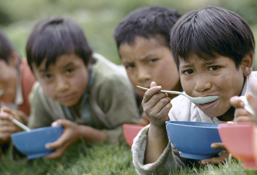 picture of young boys eating bowls of food - close to the need
