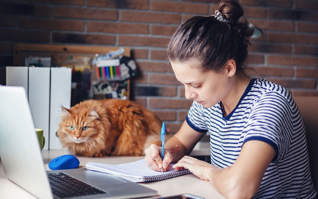 How to Work from Home Without Killing Someone: 21 Ideas for You